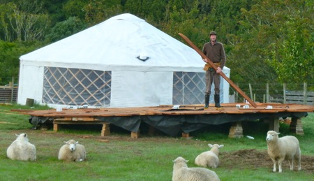 Yurt floor and sheep