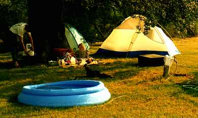Tent390