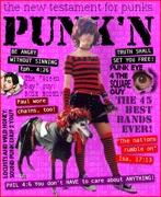 Punkn2